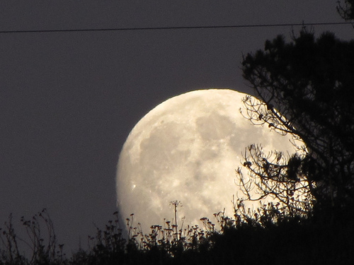 The moon rising over Half Moon Bay, California on Halloween 2009. (Credit: Douglas Messier)