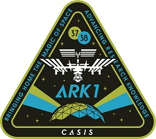 ARK1 Patch