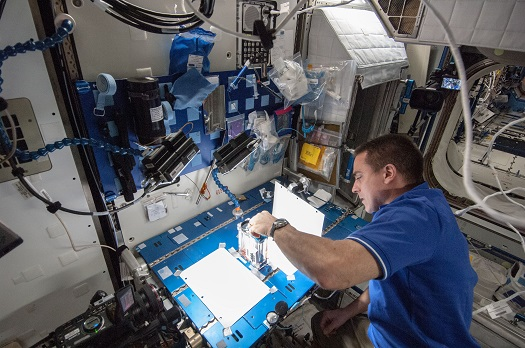 NASA astronaut Chris Cassidy, Expedition 36 flight engineer, works on the Capillary Flow Experiment aboard the International Space Station on May 22, 2013. (Credit: NASA)