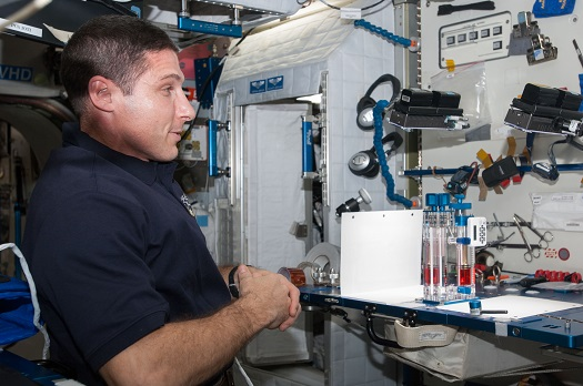 NASA astronaut Michael Hopkins conducts a session with the Capillary Flow Experiment. (Credit: NASA)