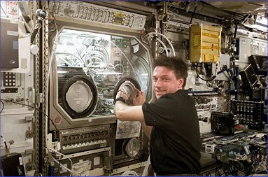 NASA astronaut Michael Foale performs an inspection of the Microgravity Science Glovebox (MSG) during Expedition 8 aboard the International Space Station. (Credit: NASA)