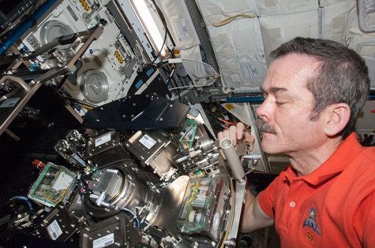 Canadian Space Agency astronaut Chris Hadfield maintaining Biolab in Europe's Columbus laboratory on the International Space Station. Biolab is an experiment workstation tailored for research on biological samples such as micro-organisms, cells, tissue cultures, plants and small invertebrates. The unit features a centrifuge that creates simulated gravity to compare how samples react to weightlessness and artificial gravity. (Credit; NASA)