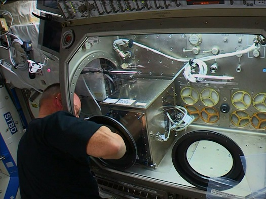 NASA astronaut Butch Wilmore installs a 3-D Printer in the Microgravity Science Glovebox on the International Space Station. (Credit: NASA-TV)