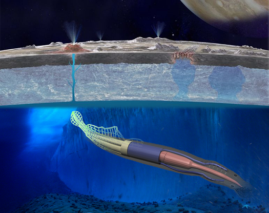 This artist's rendering depicts 2015 NIAC Phase I Fellow Mason Peck's soft-robotic rover for planetary environments for missions that cannot be accomplished with conventional power systems. It resembles a squid, with tentacle-like structures that serve as electrodynamic 'power scavengers' to harvest power from locally changing magnetic fields. The goal is to enable amphibious exploration of gas-giant moons like Europa. (Credit: NASA/Cornell University/NSF)
