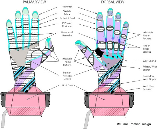 FFD MCP glove system diagram. (Credit: Final Frontier Design)