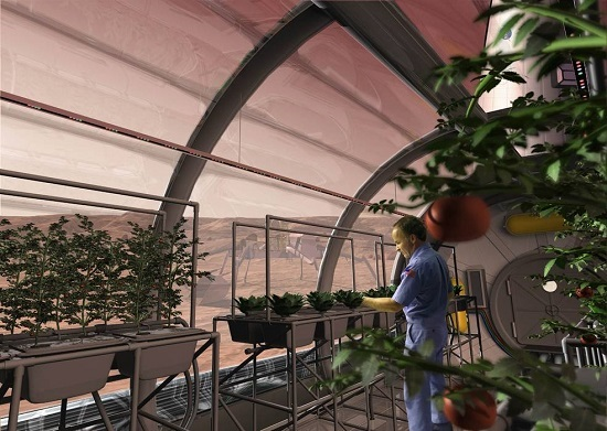 An artist concept depicts a greenhouse on the surface of Mars. Plants are growing with the help of red, blue and green LED light bars and a hydroponic cultivation approach. (Credit: SAIC)